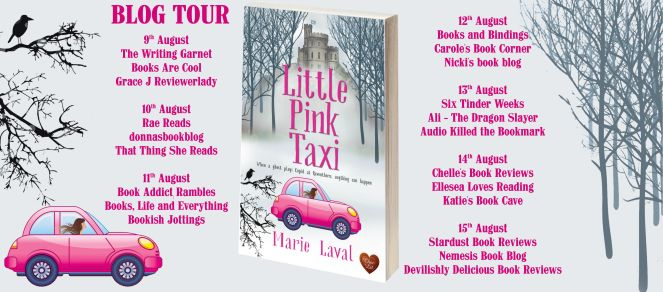 Little Pink Taxi Full Tour Banner