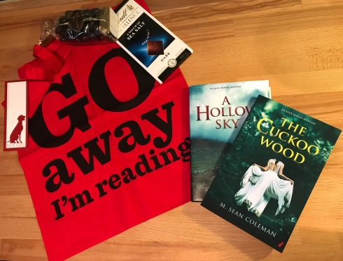 A Hollow Sky Giveaway Prize